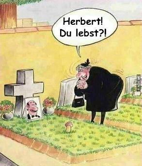 121_herbert-du-lebst