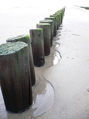 81_Tag_am_Meer_reloaded_111